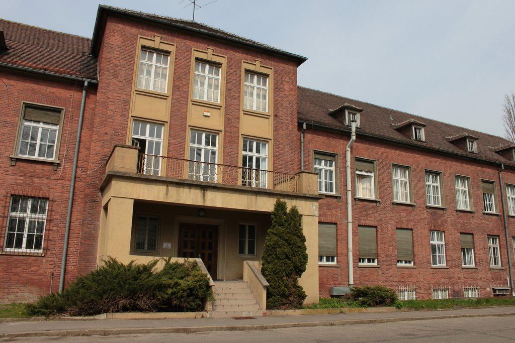 Lokal użytkowy na sprzedaż Gorzów Wielkopolski, Górczyn  3729m2 Foto 2
