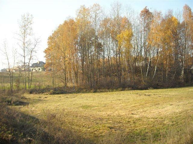 Działka inna na sprzedaż Ruda-Bugaj  14800m2 Foto 1