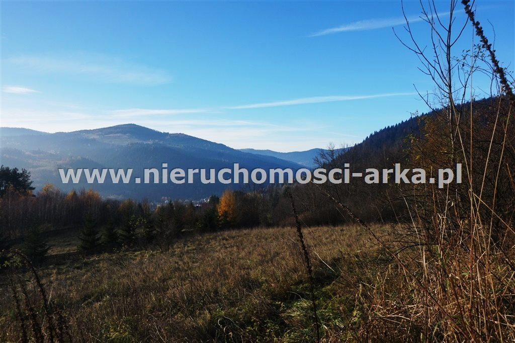 Działka rolna na sprzedaż Szczawa  1650m2 Foto 1