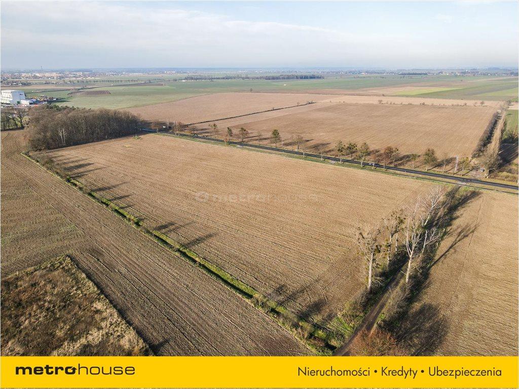 Działka rolna na sprzedaż Bogdańczowice, Kluczbork  57700m2 Foto 3