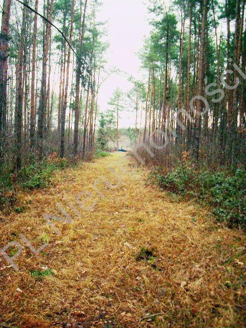 Działka leśna na sprzedaż Lesznowola  1918m2 Foto 9