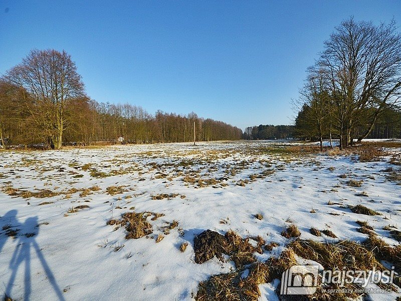 Działka inwestycyjna na sprzedaż Tanowo, wieś  3233m2 Foto 6