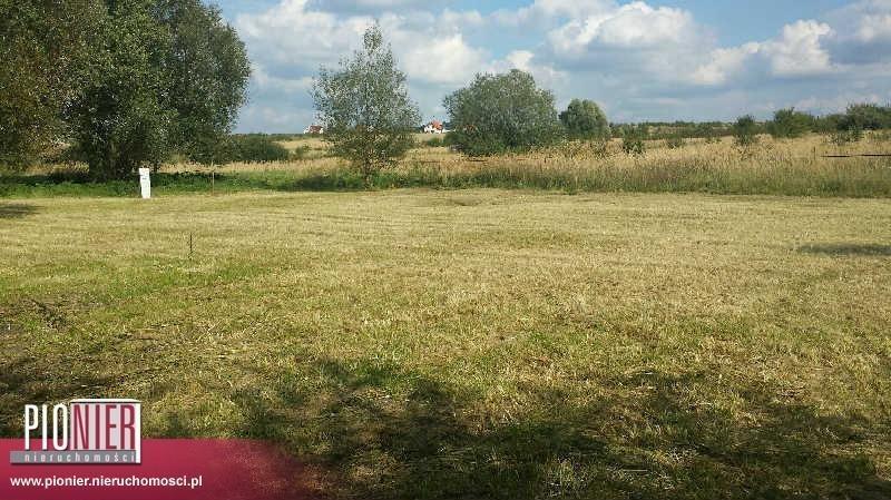 Działka rolna na sprzedaż Mierzyn, Pod Lipami  1026m2 Foto 5