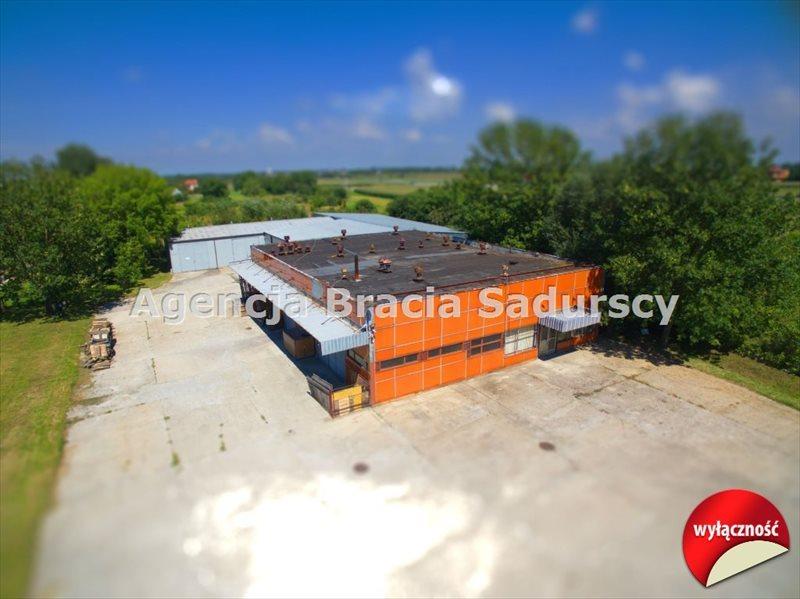 Lokal użytkowy na sprzedaż Przemyśl, Sielec, Sielecka  1200m2 Foto 1