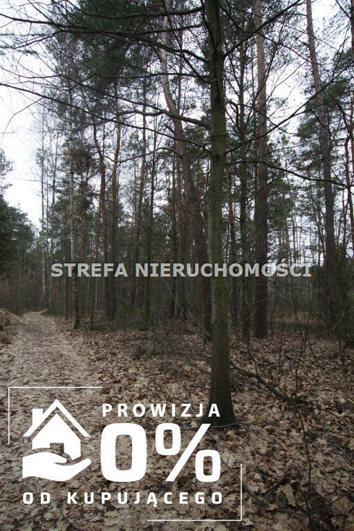 Działka leśna na sprzedaż Smardzewice  3521m2 Foto 2