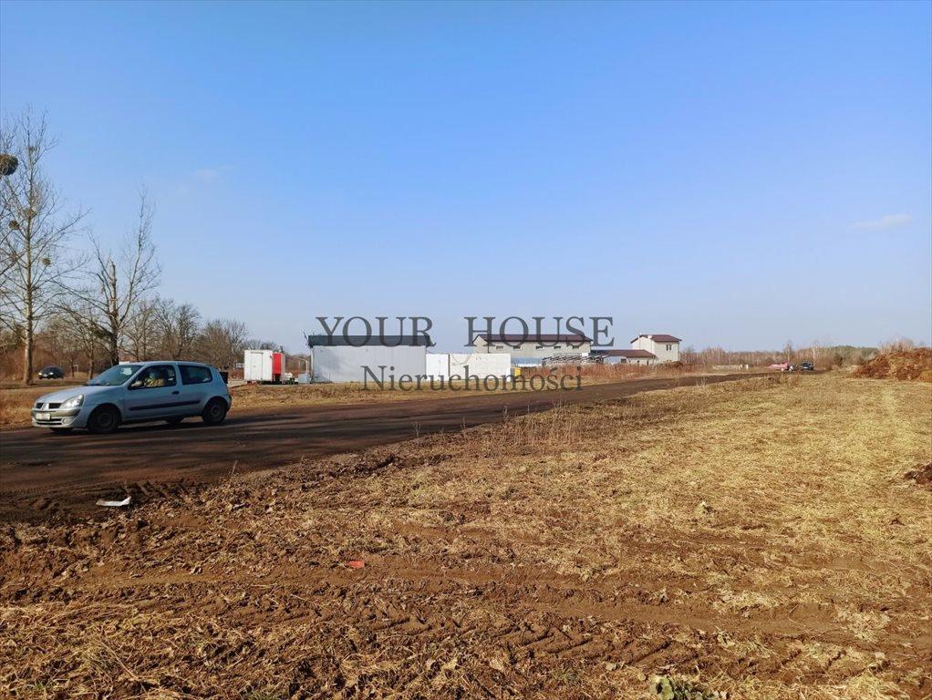 Działka budowlana na sprzedaż Miłoszyce, Asnyka  1231m2 Foto 6