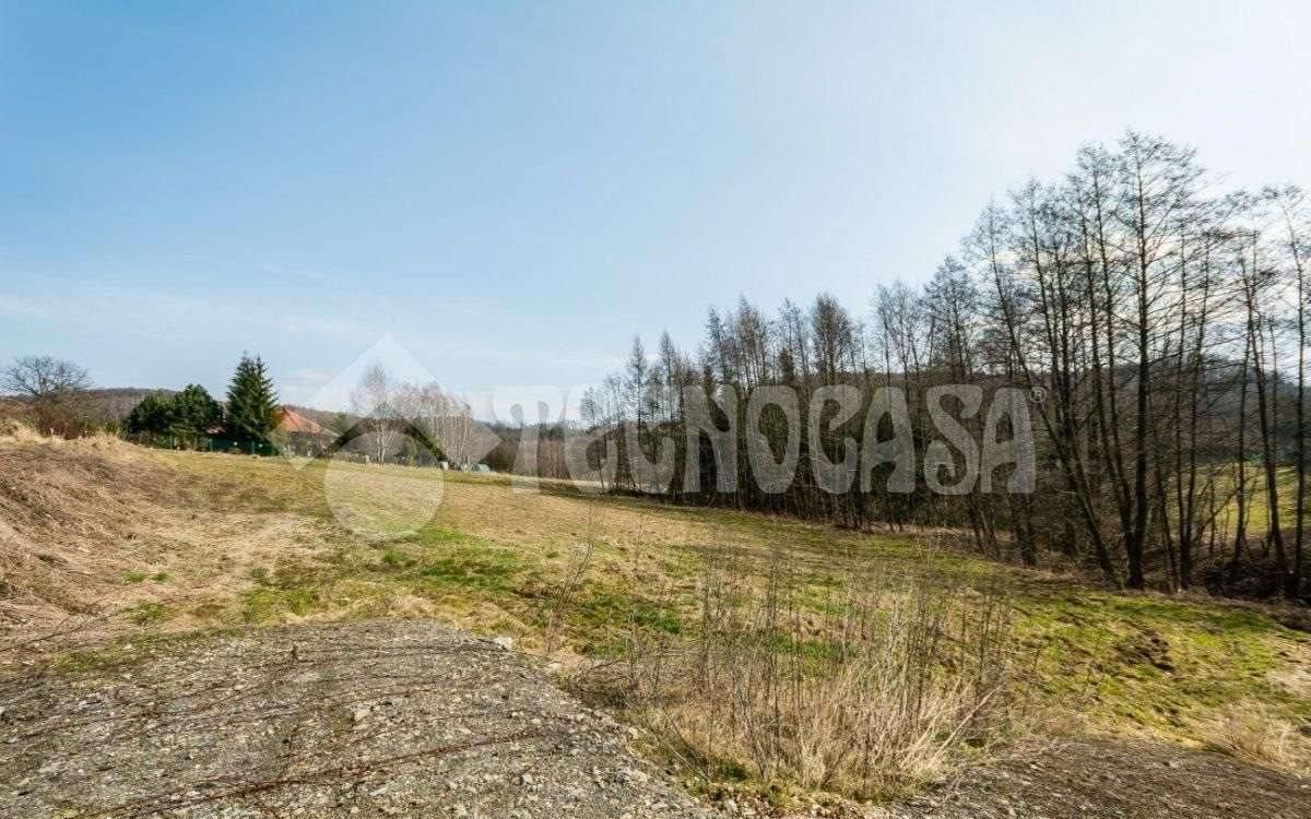 Działka budowlana na sprzedaż Dobranowice  5380m2 Foto 5