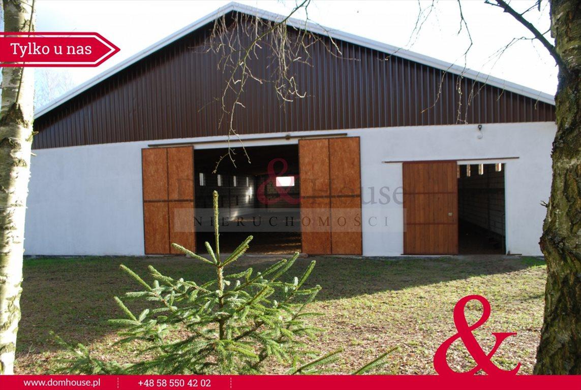 Lokal użytkowy na sprzedaż Mirowo Duże  420m2 Foto 1