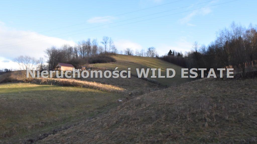 Działka rolna na sprzedaż Solina, Zawóz  6012m2 Foto 3