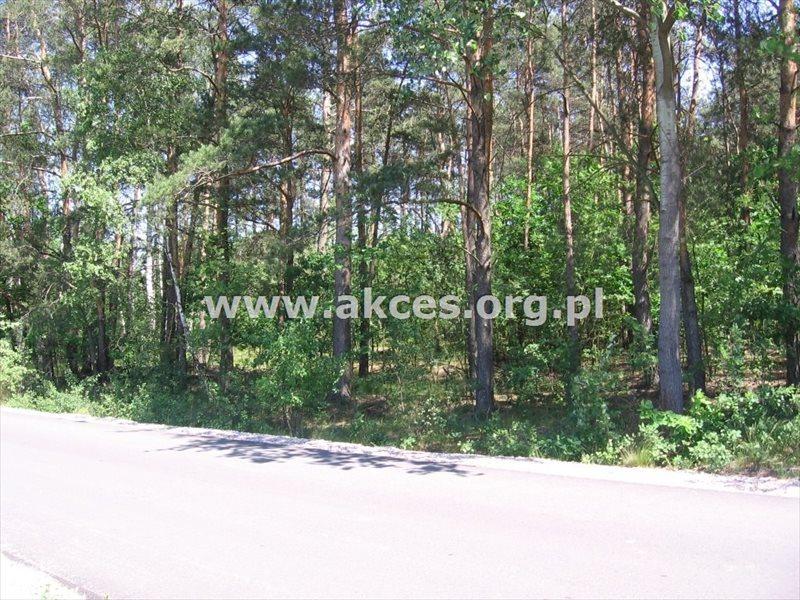 Działka budowlana na sprzedaż Budy-Grzybek  8500m2 Foto 2