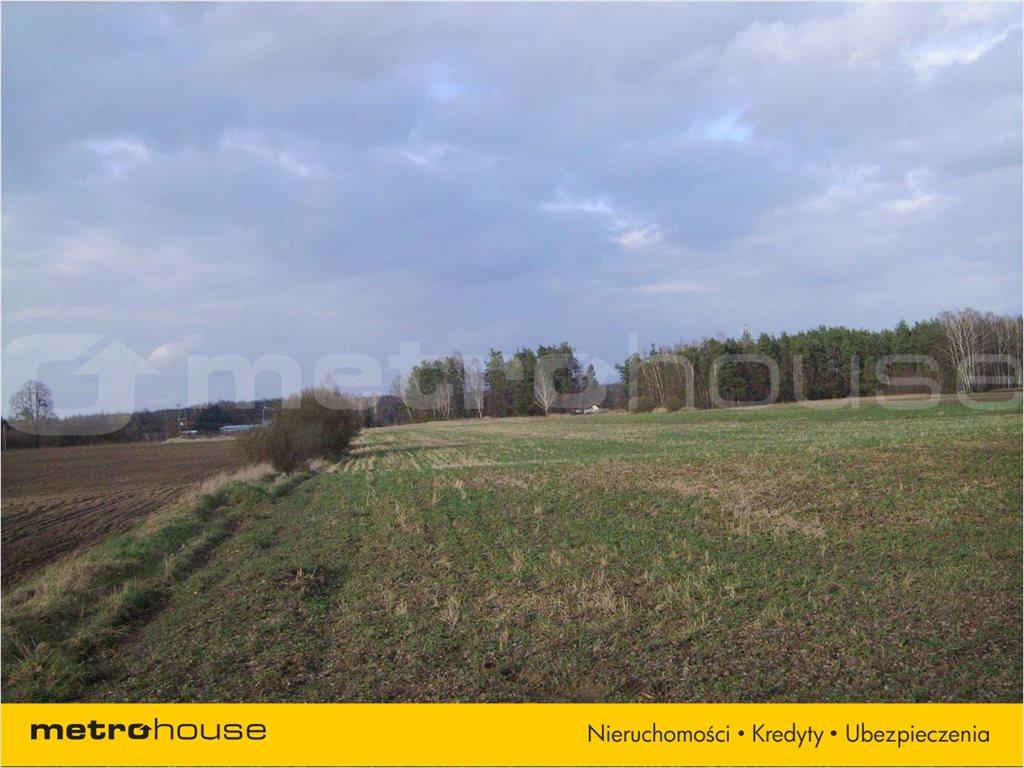 Działka rolna na sprzedaż Chudolipie, Mszczonów  10500m2 Foto 3