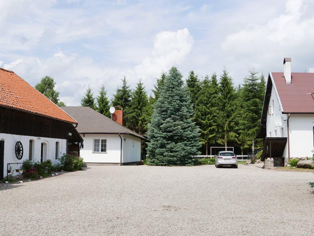 Dom na sprzedaż Stękiny  700m2 Foto 10