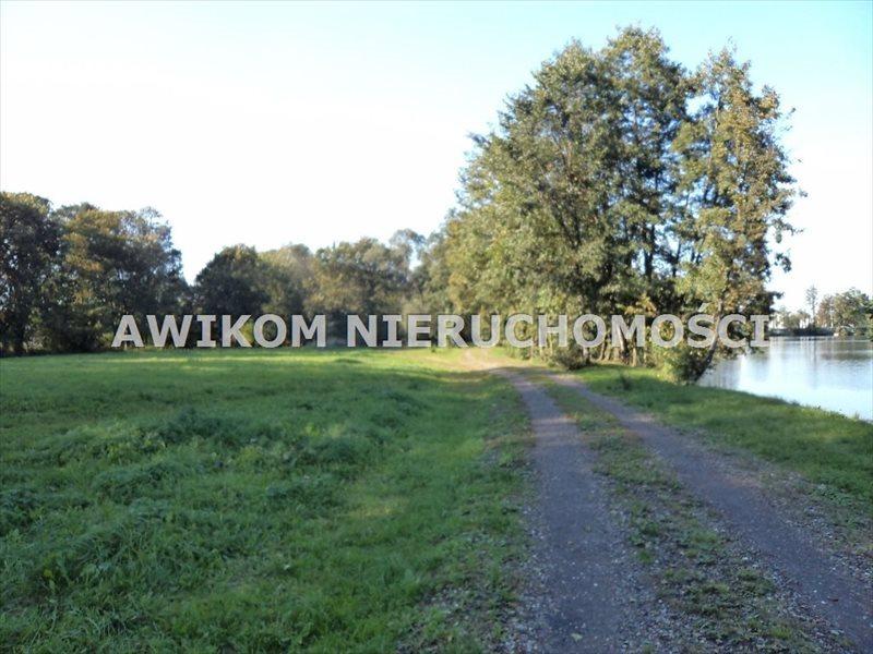 Działka inwestycyjna na sprzedaż Odrano-Wola  53200m2 Foto 5