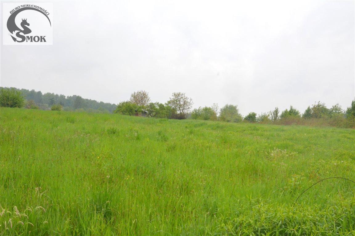 Działka rolna na sprzedaż Kraków, Podgórze, Kosocice  2600m2 Foto 1