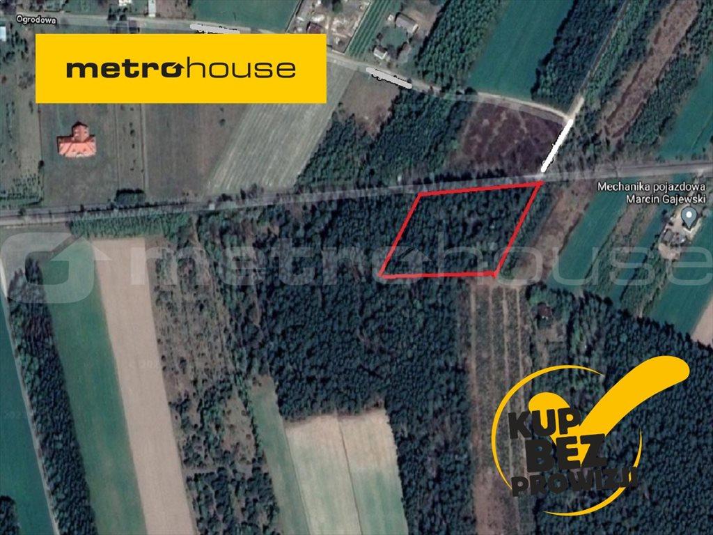 Działka rolna na sprzedaż Długowizna, Mszczonów  7800m2 Foto 1