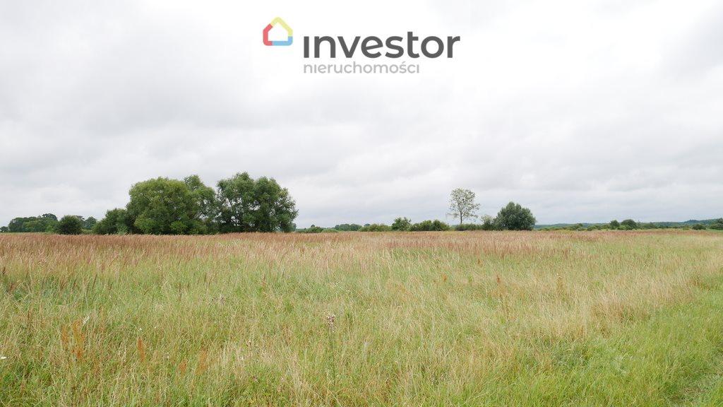 Działka inwestycyjna na sprzedaż Nowe Chojno  10811m2 Foto 1
