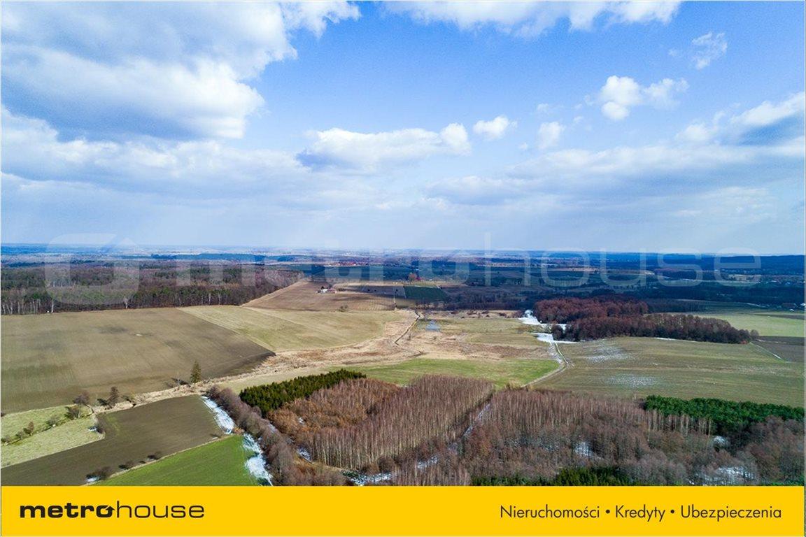Działka rolna na sprzedaż Piskajny, Godkowo  11900m2 Foto 6