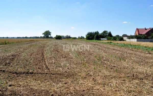 Działka rolna na sprzedaż Piersna, Piersna  4400m2 Foto 3