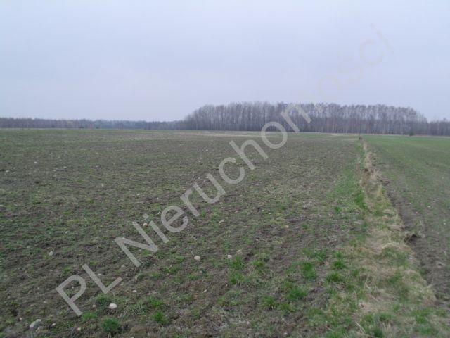 Działka rolna na sprzedaż Mszczonów  13500m2 Foto 4