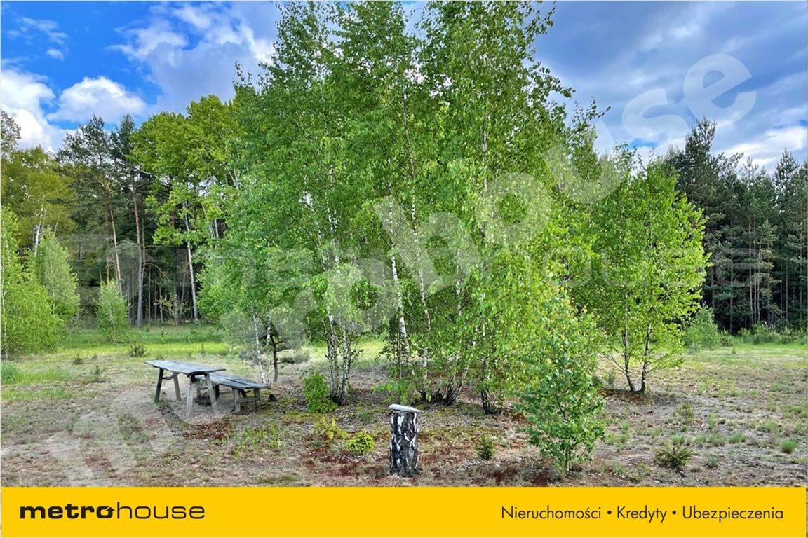 Działka leśna na sprzedaż Chełsty, Różan  80000m2 Foto 5