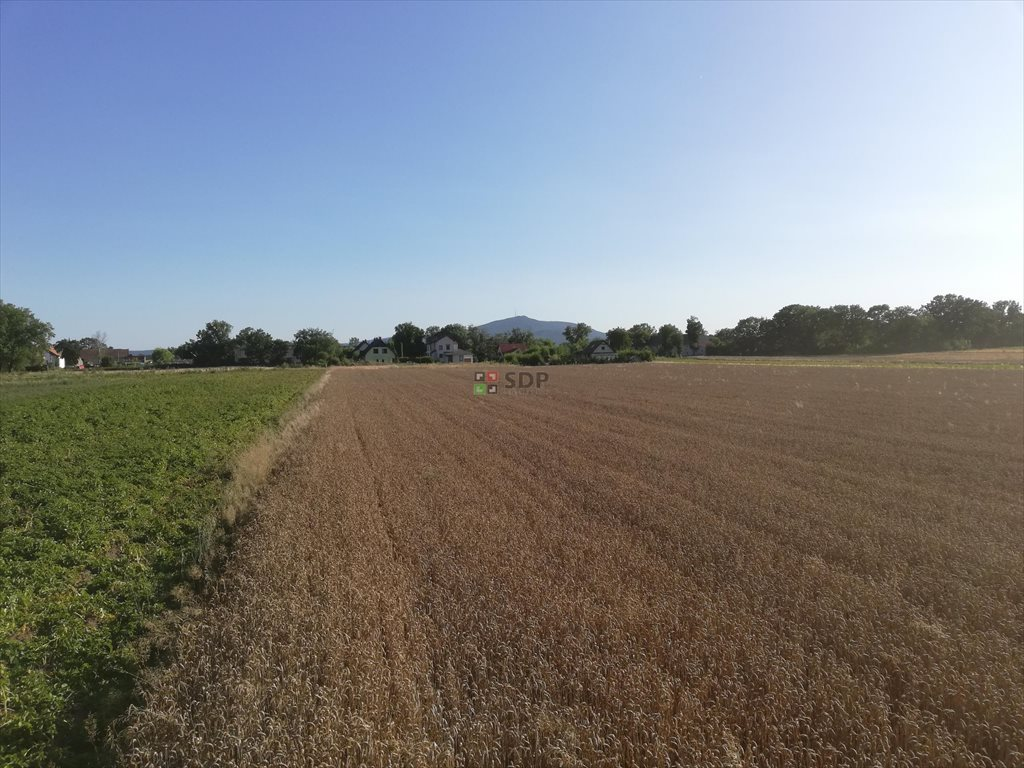 Działka rolna na sprzedaż Michałowice  77000m2 Foto 3