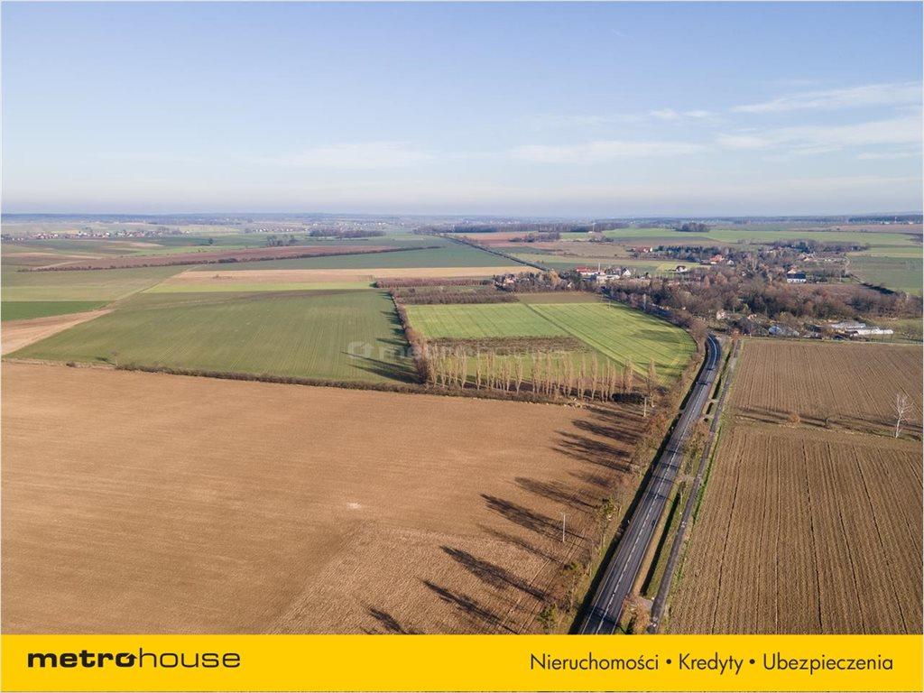 Działka budowlana na sprzedaż Bogdańczowice, Kluczbork  53100m2 Foto 3