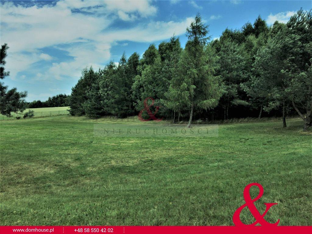 Działka rolna na sprzedaż Łebno  81414m2 Foto 8