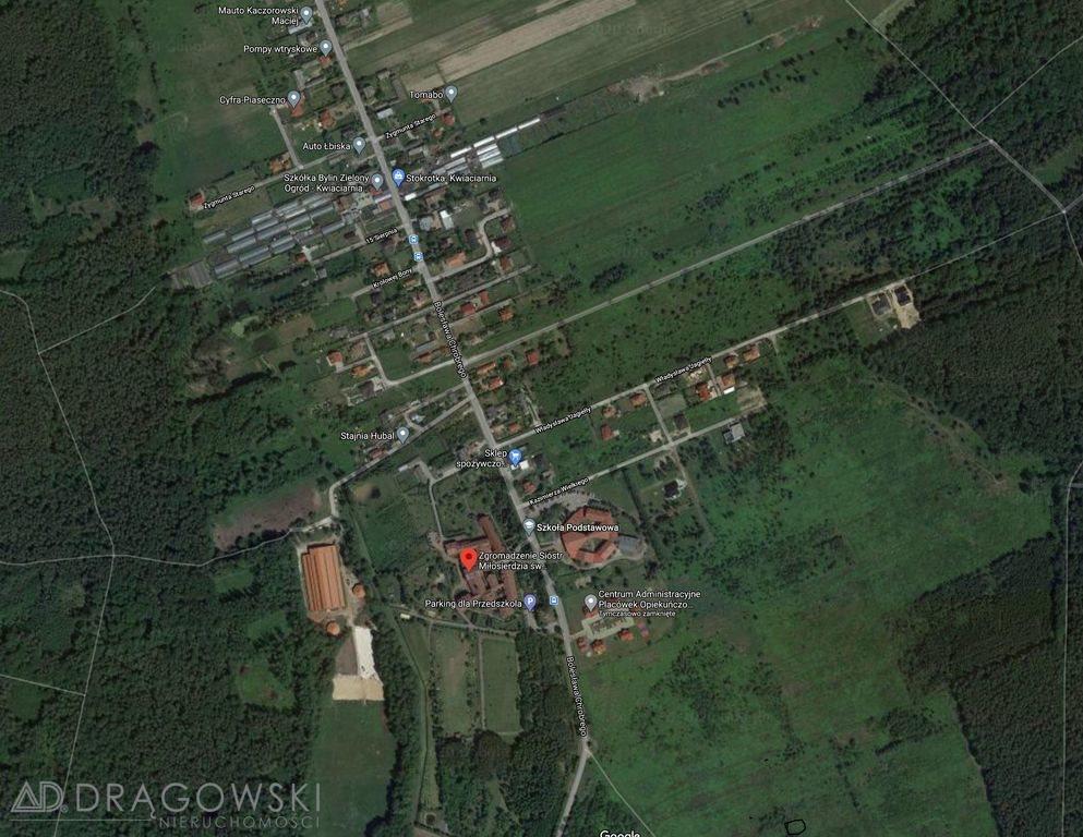 Działka budowlana na sprzedaż Pęchery-Łbiska  3000m2 Foto 1