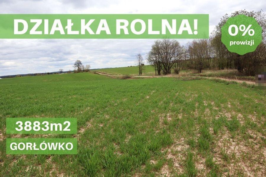 Działka rolna na sprzedaż Gorłówko  3883m2 Foto 1