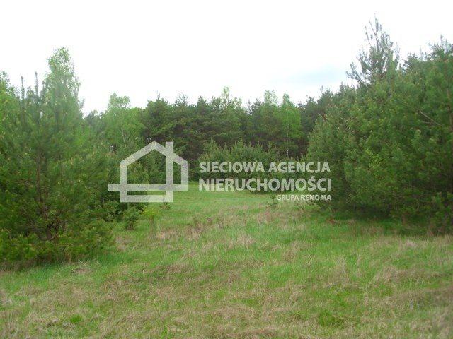 Działka siedliskowa na sprzedaż Miedzno  4564m2 Foto 8