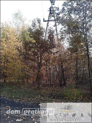 Działka leśna na sprzedaż Łódź, Bałuty  9761m2 Foto 3