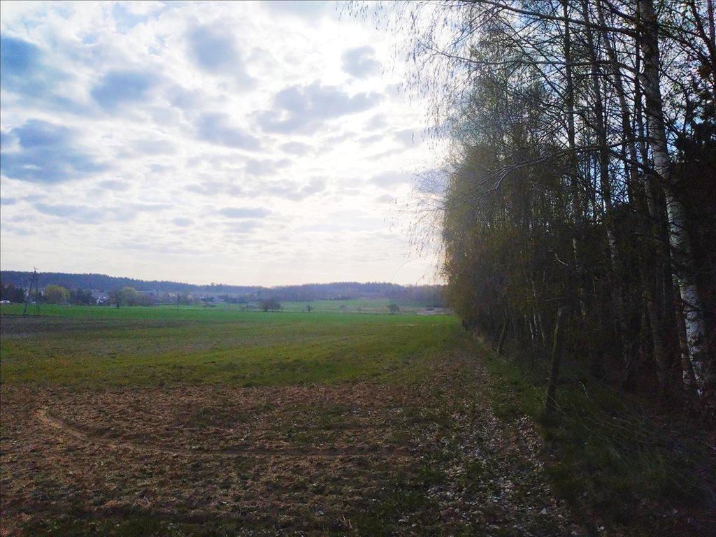 Działka rolna na sprzedaż Rościsławice, Oborniki Śląskie  15861m2 Foto 9