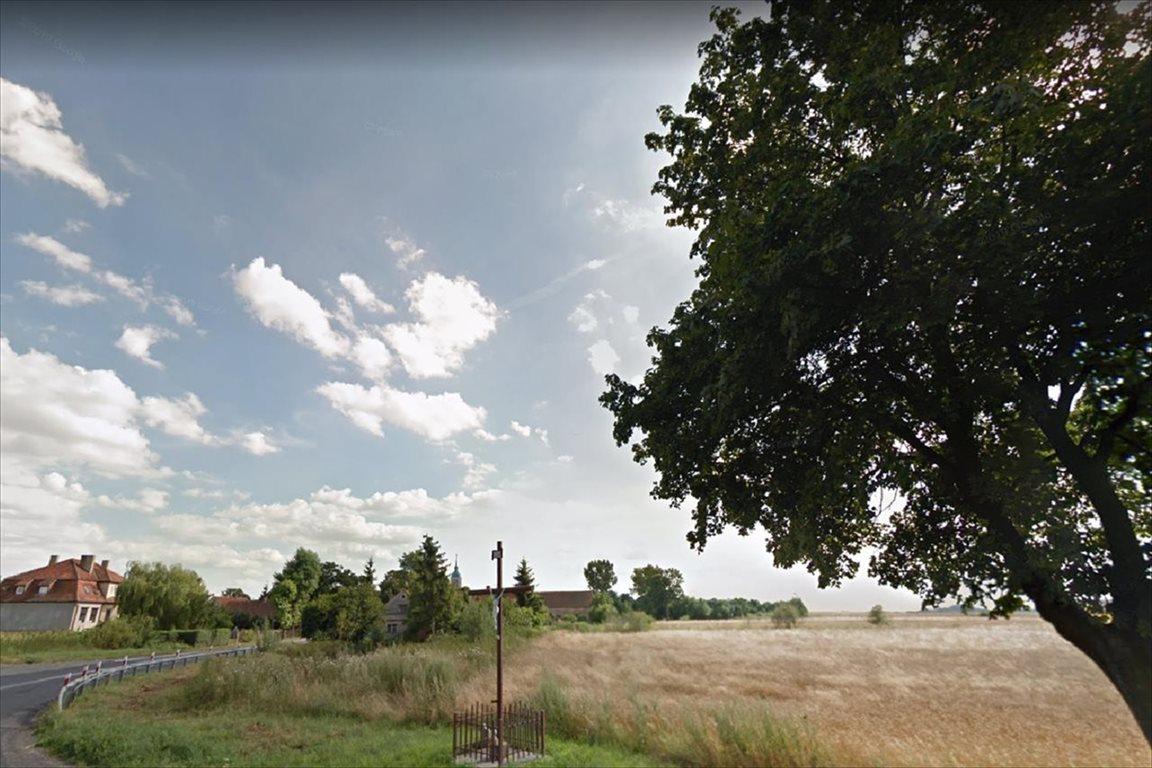 Działka rolna na sprzedaż Świdnica Polska, Kostomłoty  5300m2 Foto 4
