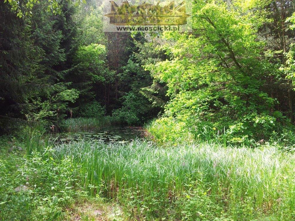 Dom na sprzedaż Czarnów  320m2 Foto 4