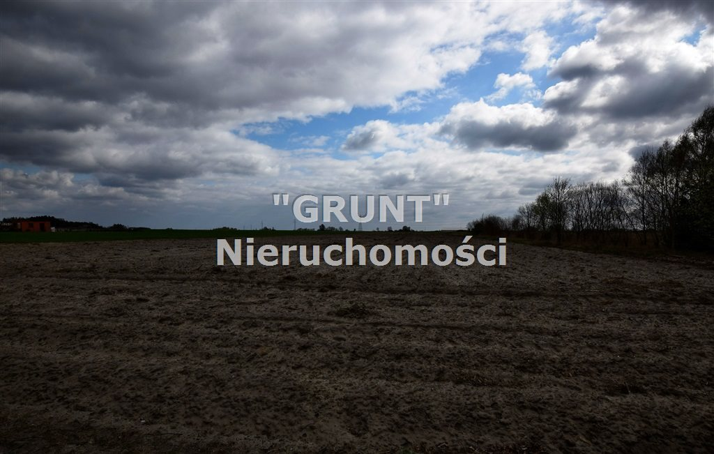 Działka rolna na sprzedaż Biała  14500m2 Foto 1