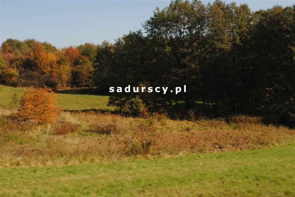 Działka rolna na sprzedaż Kraków, Swoszowice, Rajsko, Golkowicka  2761m2 Foto 3