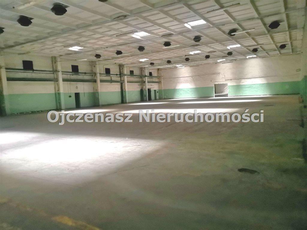 Lokal użytkowy na sprzedaż Toruń  19153m2 Foto 2