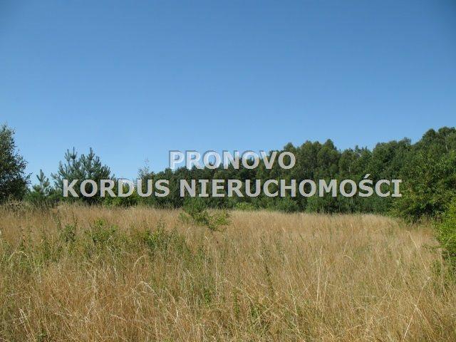 Działka rolna na sprzedaż Steklno  116500m2 Foto 2