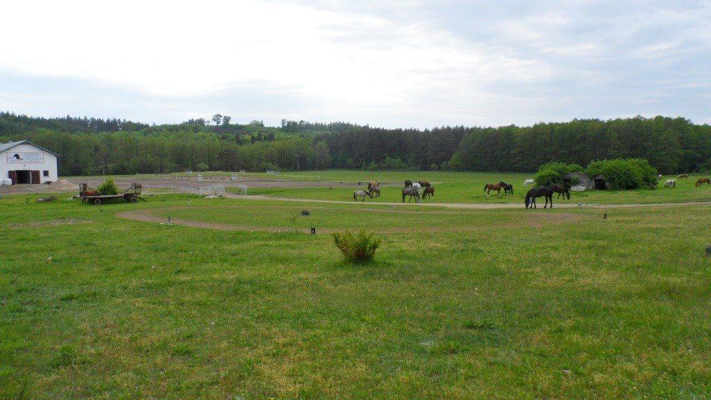 Działka rolna na sprzedaż Choczewo  5154m2 Foto 5