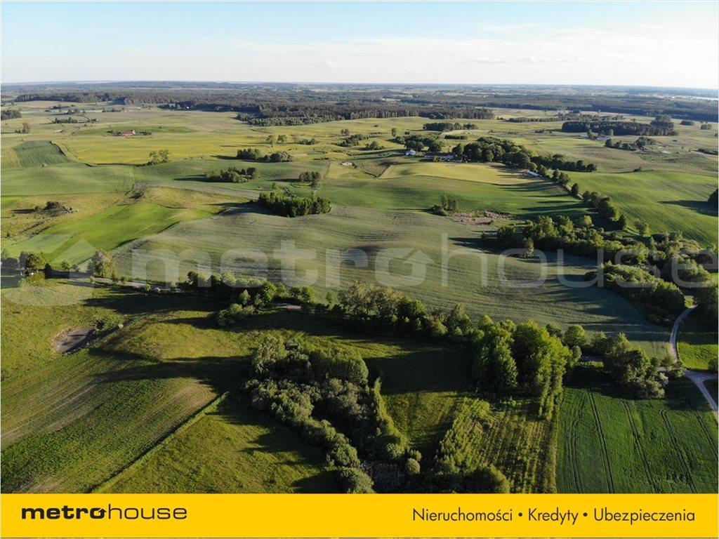 Działka rolna na sprzedaż Rydzewo, Miłki  3000m2 Foto 2