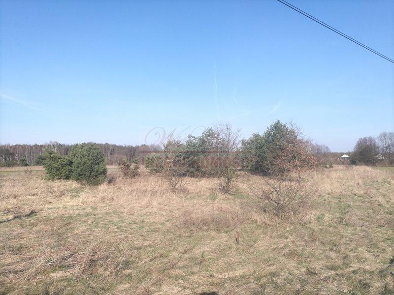 Działka budowlana na sprzedaż Nowa Wieś  3007m2 Foto 7