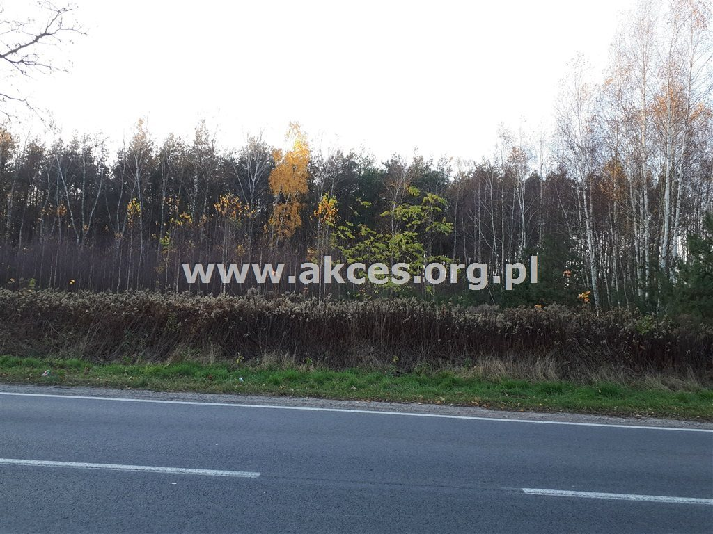 Działka leśna na sprzedaż Nowy Prażmów  17600m2 Foto 6