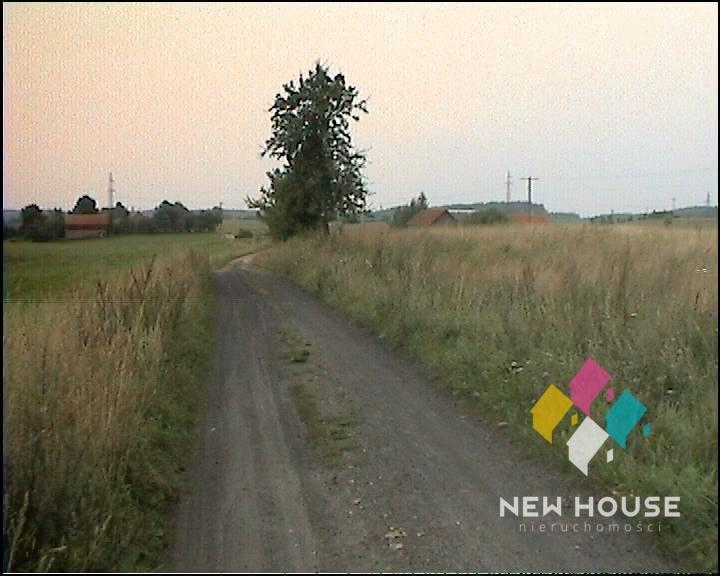 Działka rolna na sprzedaż Szałstry  6200m2 Foto 7
