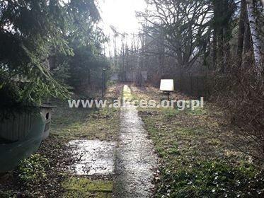 Działka leśna na sprzedaż Henryków-Urocze  27900m2 Foto 8
