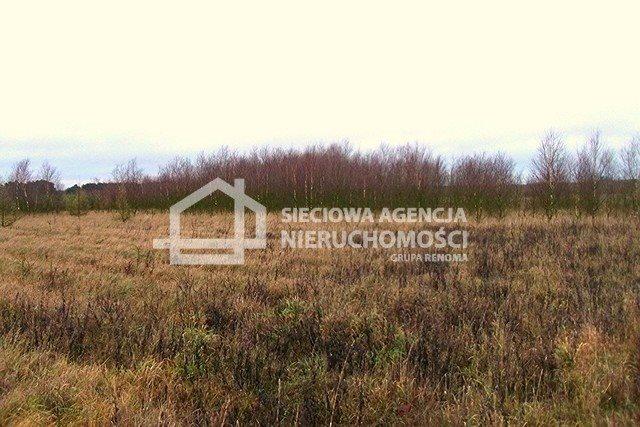 Działka leśna na sprzedaż Strzeczona  206330m2 Foto 11