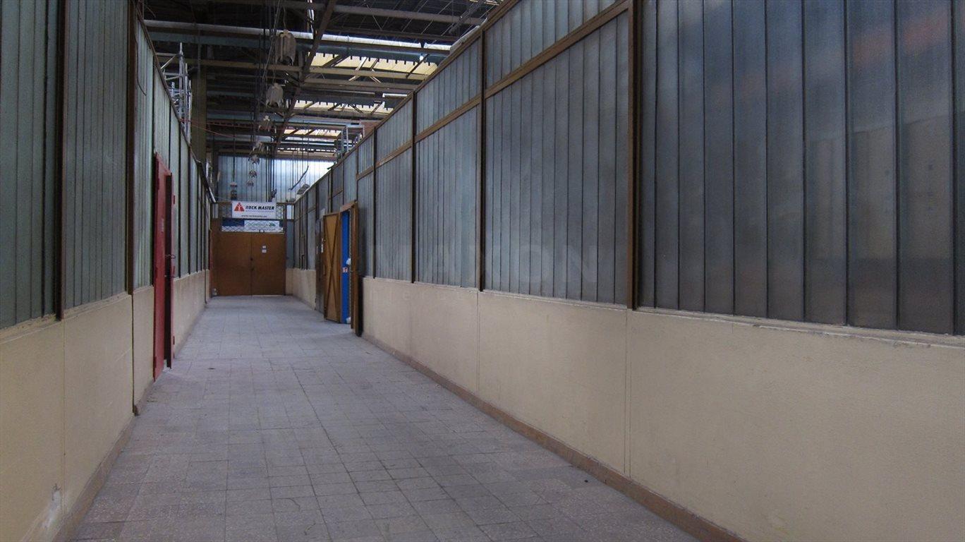 Lokal użytkowy na wynajem Warszawa, Bielany, ul. Wólczyńska  160m2 Foto 3