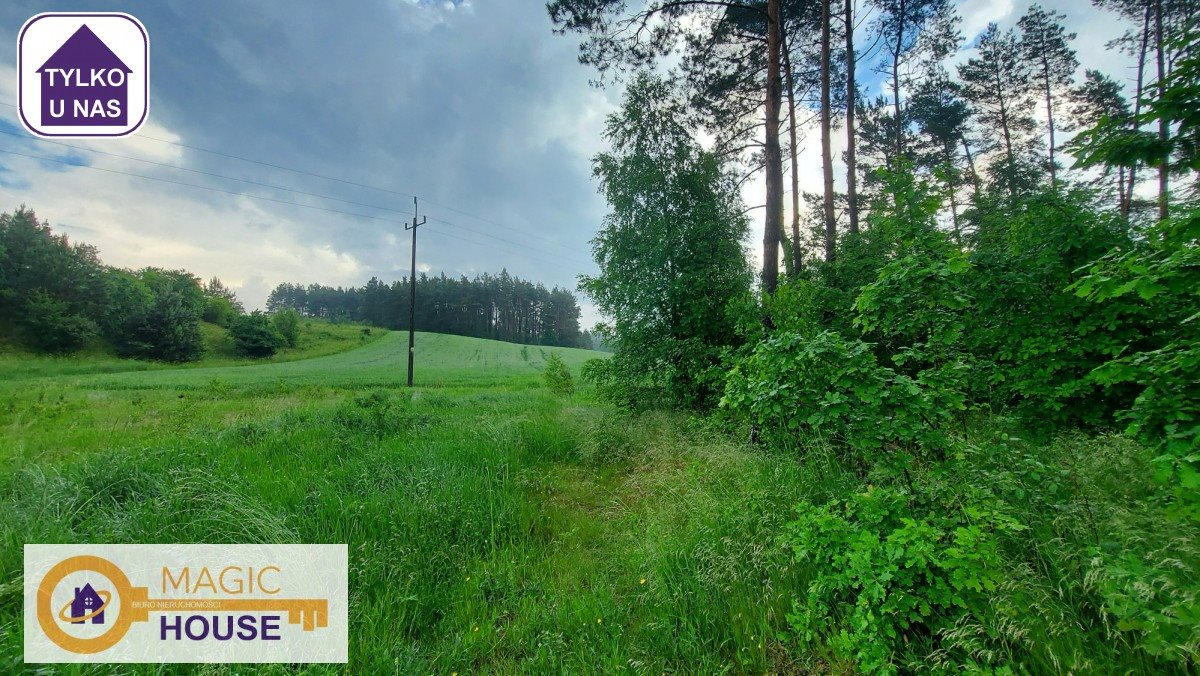 Działka leśna na sprzedaż Gołubie  18900m2 Foto 5