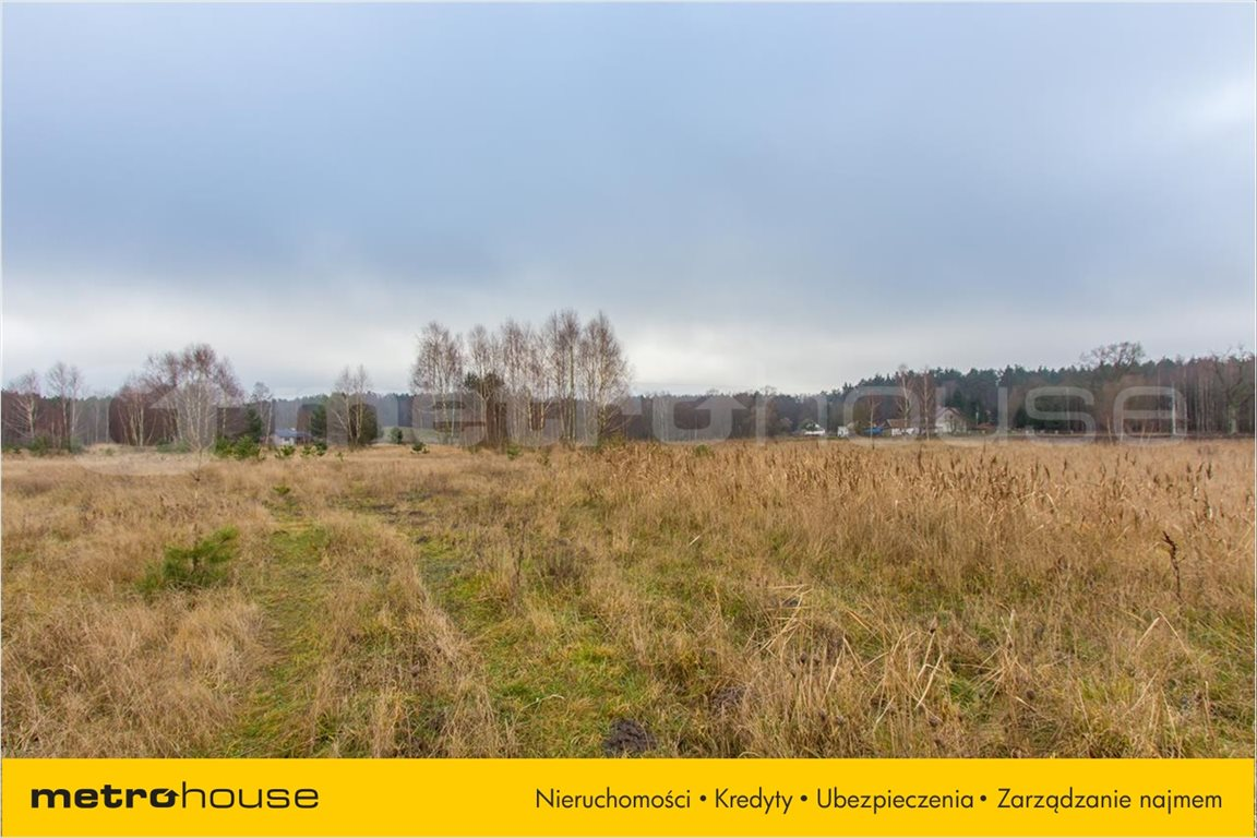 Działka rolna na sprzedaż Jelonek, Borne Sulinowo  30900m2 Foto 6
