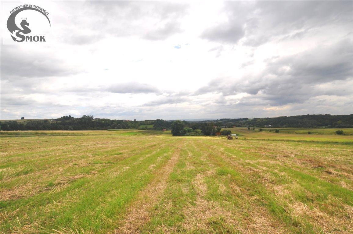Działka rolna na sprzedaż Książniczki  17500m2 Foto 1