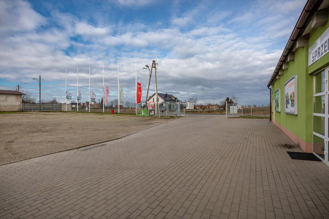 Działka inwestycyjna na sprzedaż Budziszów Wielki  9276m2 Foto 1